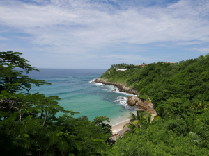 Photo of Playa Carrizalillo with clear water and blue skies.